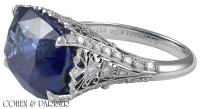 Tiffany & Co. Schlumberger Sapphire and Diamond Ring